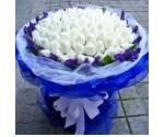 求爱神器99朵白玫瑰 政和屏南花店