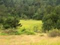 仙山牧场拍摄 (6)