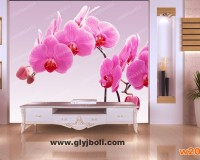 蝴蝶花艺术玻璃电视背景墙效果图
