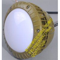 40w防爆LED壁灯,30w防爆LED路灯