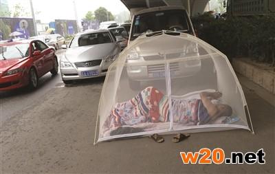 帐篷搭到快车道上
