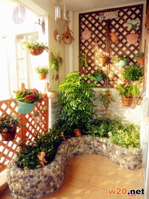 在阳台上种值绿色植物