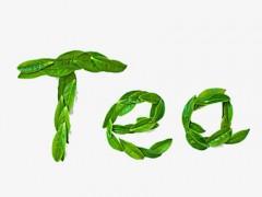 上海国际茶博会与地标茶博会共同打造升级版茶业展示交易平台
